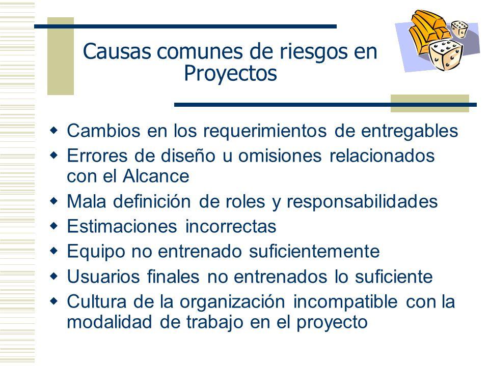 Causas comunes de riesgos en Proyectos