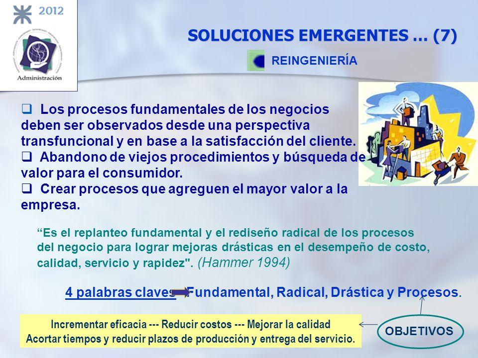 SOLUCIONES EMERGENTES … (7)