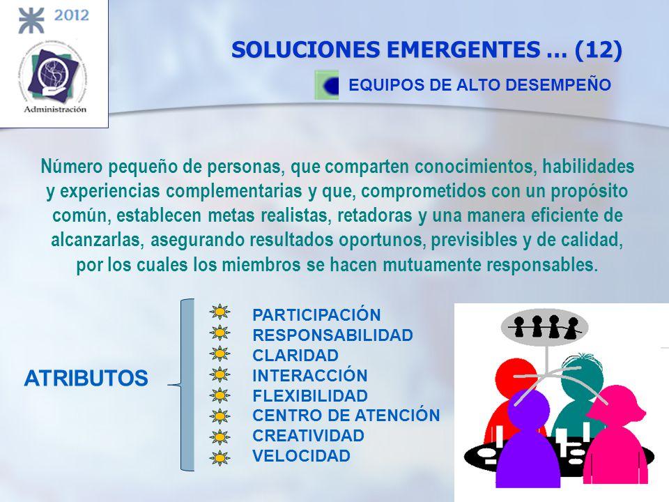 SOLUCIONES EMERGENTES … (12)