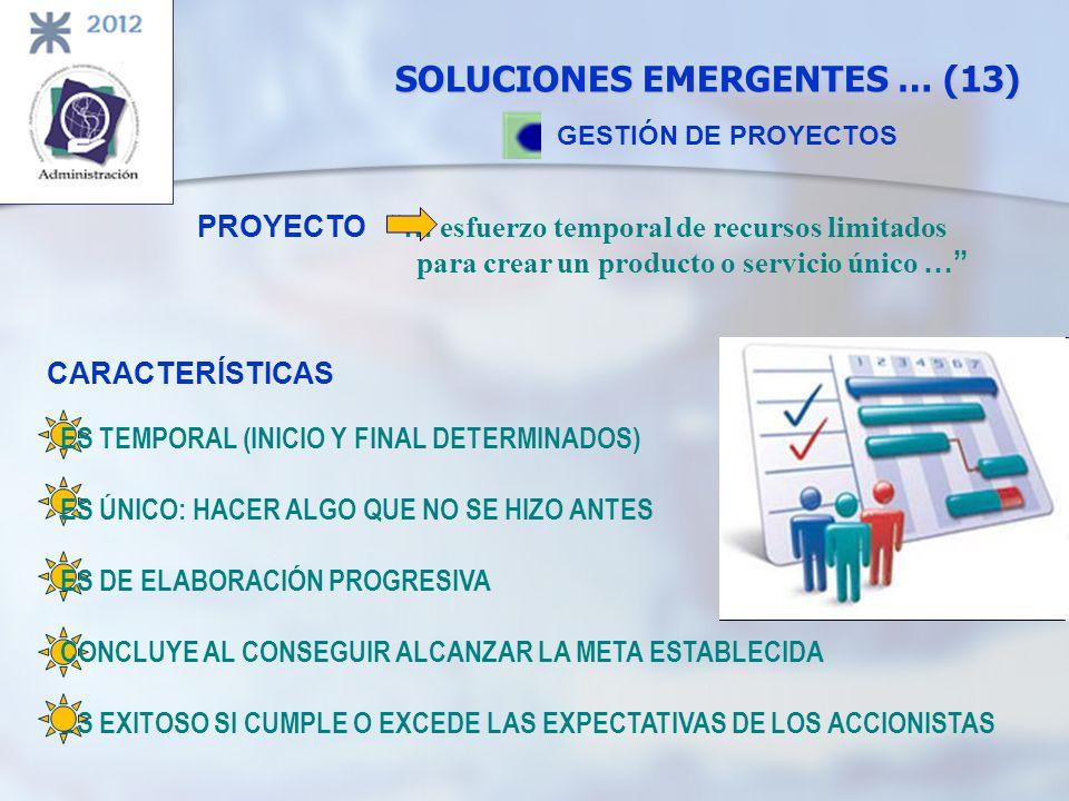 SOLUCIONES EMERGENTES … (13)