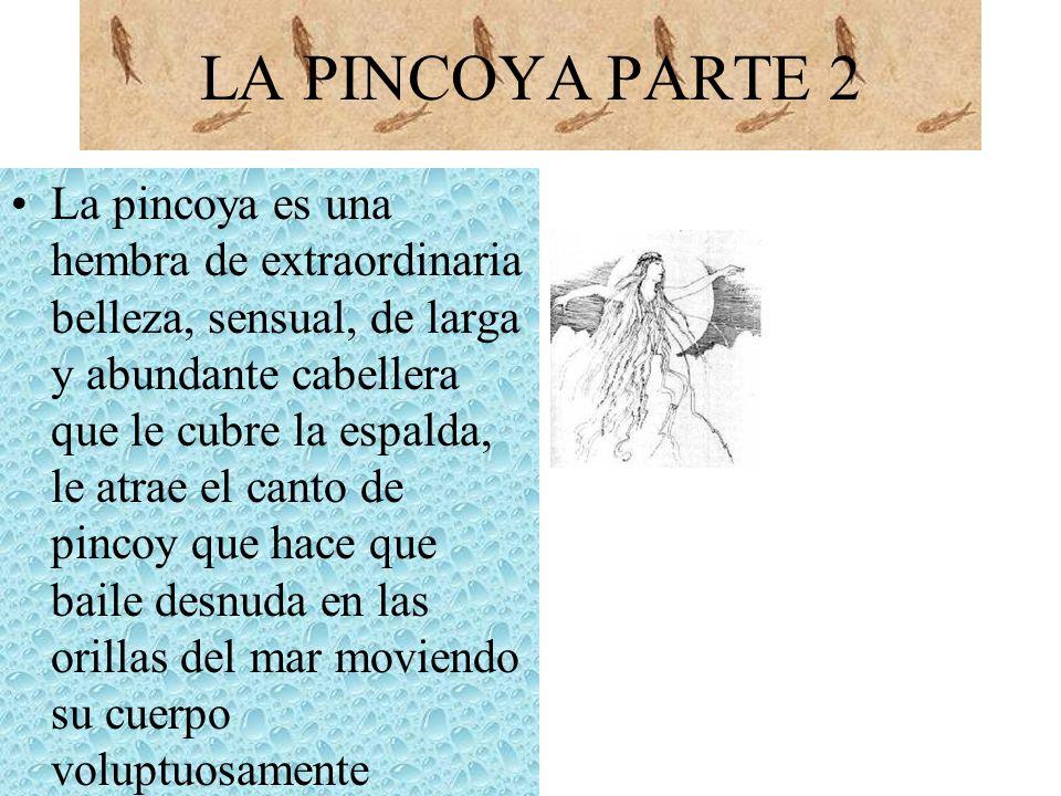 LA PINCOYA PARTE 2