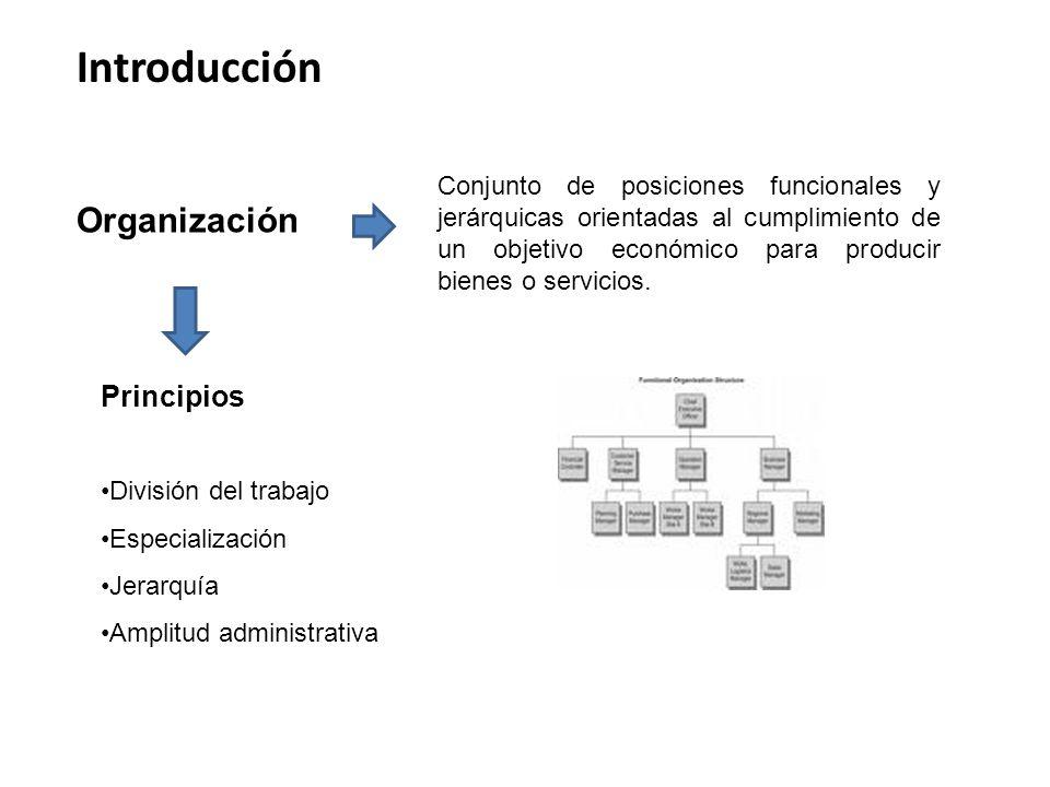 Introducción Organización Principios