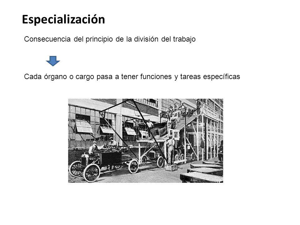 Especialización Consecuencia del principio de la división del trabajo