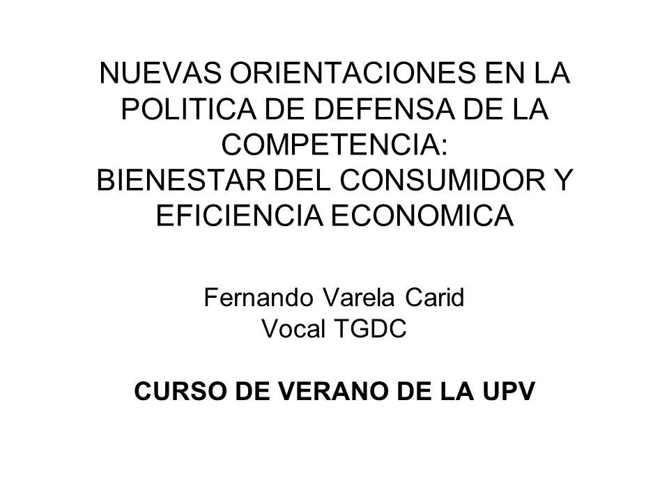 Fernando Varela Carid Vocal TGDC CURSO DE VERANO DE LA UPV