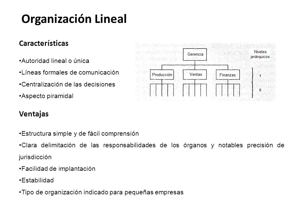 Organización Lineal Características Ventajas Autoridad lineal o única