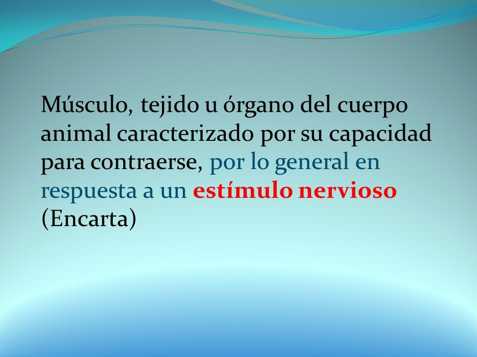 Músculo, tejido u órgano del cuerpo animal caracterizado por su capacidad para contraerse, por lo general en respuesta a un estímulo nervioso (Encarta)