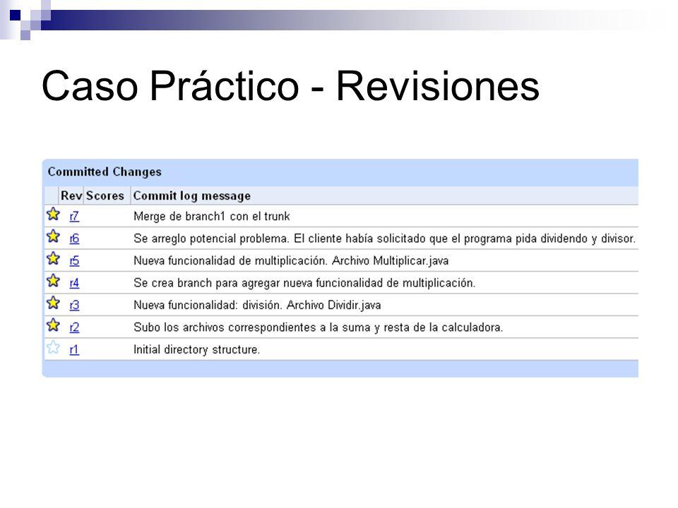 Caso Práctico - Revisiones