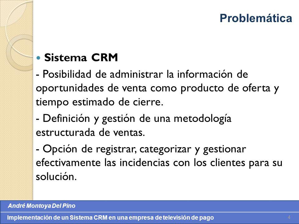 Problemática Sistema CRM.