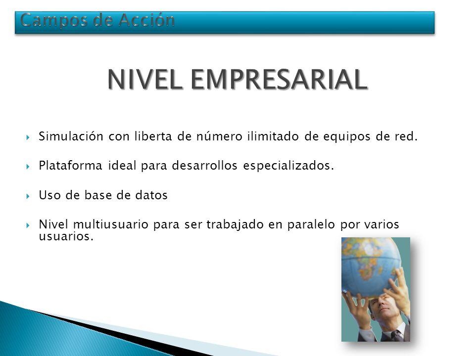 NIVEL EMPRESARIAL Campos de Acción