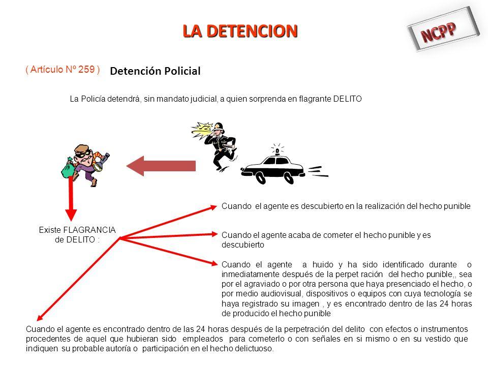 NCPP LA DETENCION Detención Policial ( Artículo Nº 259 )
