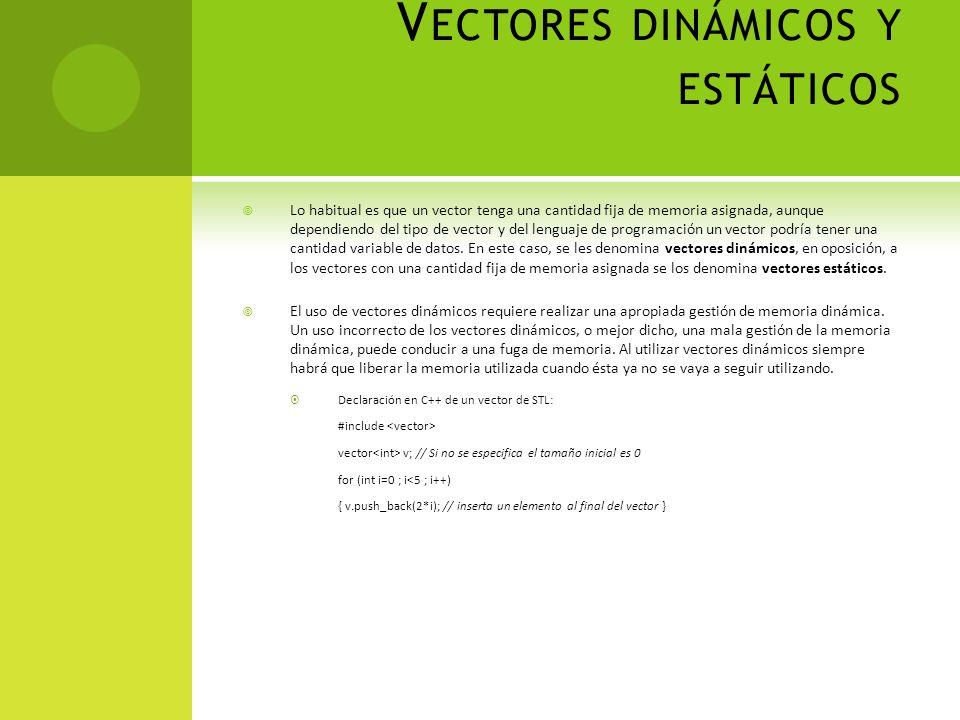 Vectores dinámicos y estáticos