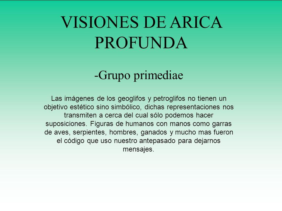 VISIONES DE ARICA PROFUNDA