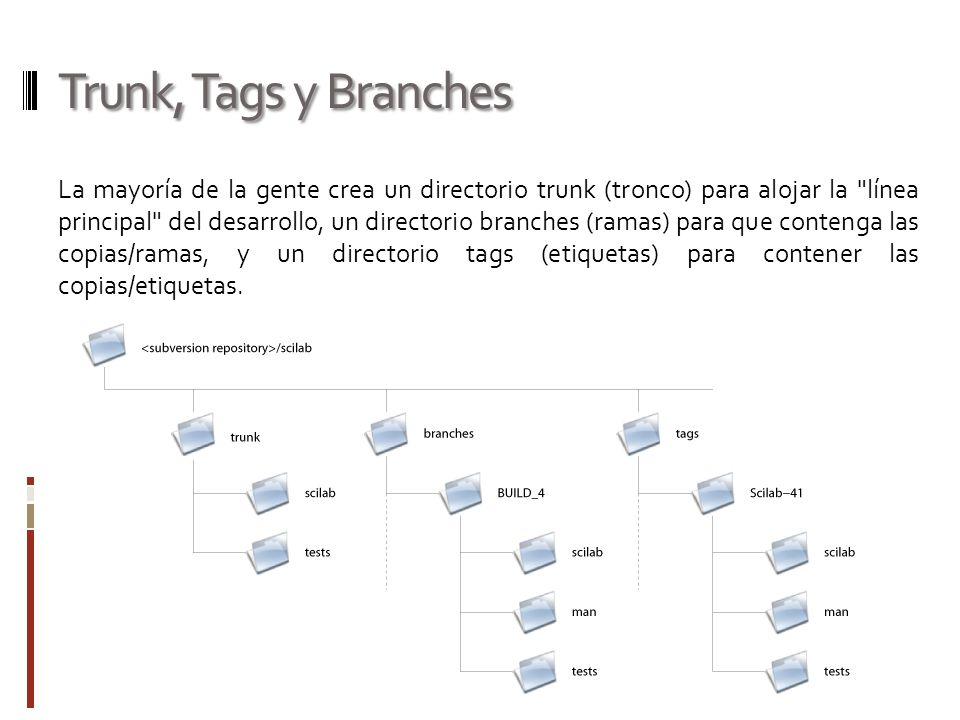Trunk, Tags y Branches