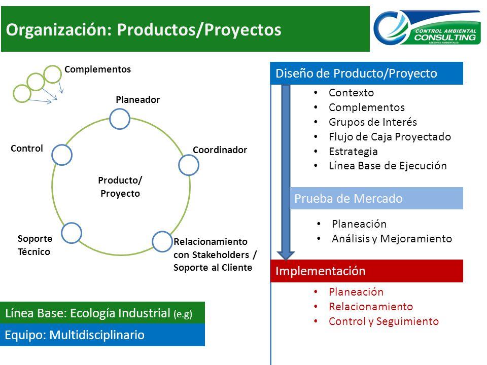 Organización: Productos/Proyectos