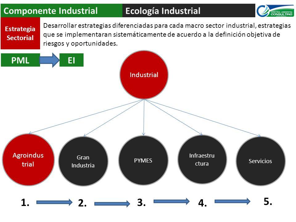 1. 2. 3. 4. 5. Componente Industrial Ecología Industrial PML EI