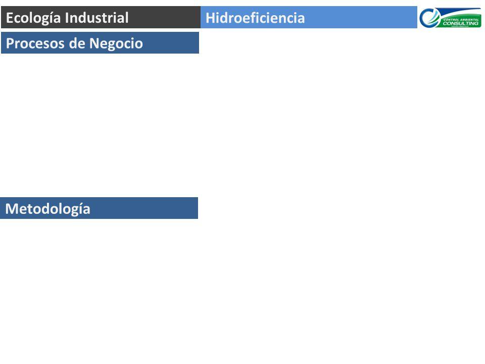 Ecología Industrial Hidroeficiencia Procesos de Negocio Metodología