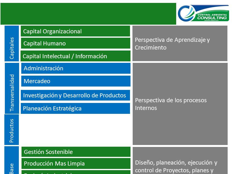 Capital Organizacional Perspectiva de Aprendizaje y Crecimiento