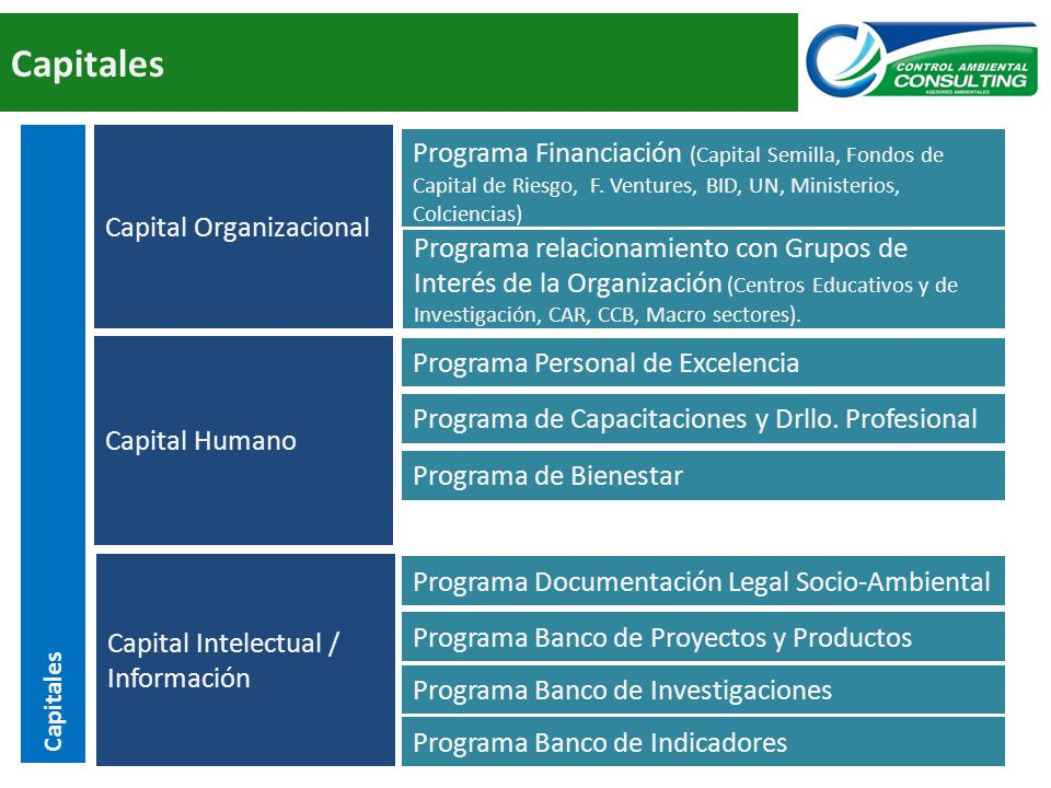 Capitales Capital Organizacional.
