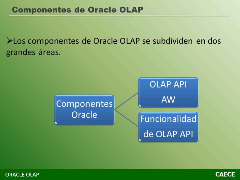 Los componentes de Oracle OLAP se subdividen en dos grandes áreas.