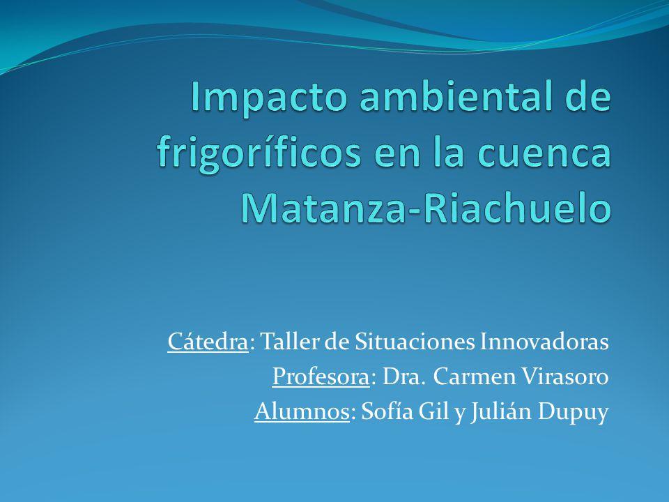 Impacto ambiental de frigoríficos en la cuenca Matanza-Riachuelo