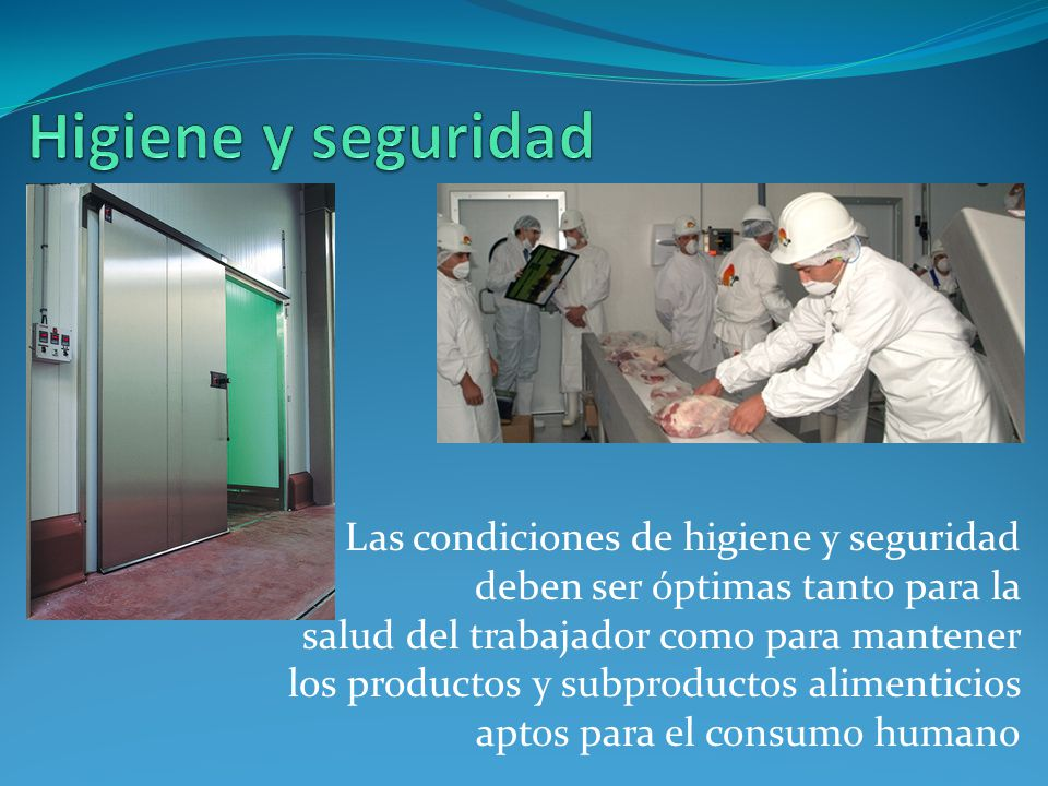 Higiene y seguridad Las condiciones de higiene y seguridad