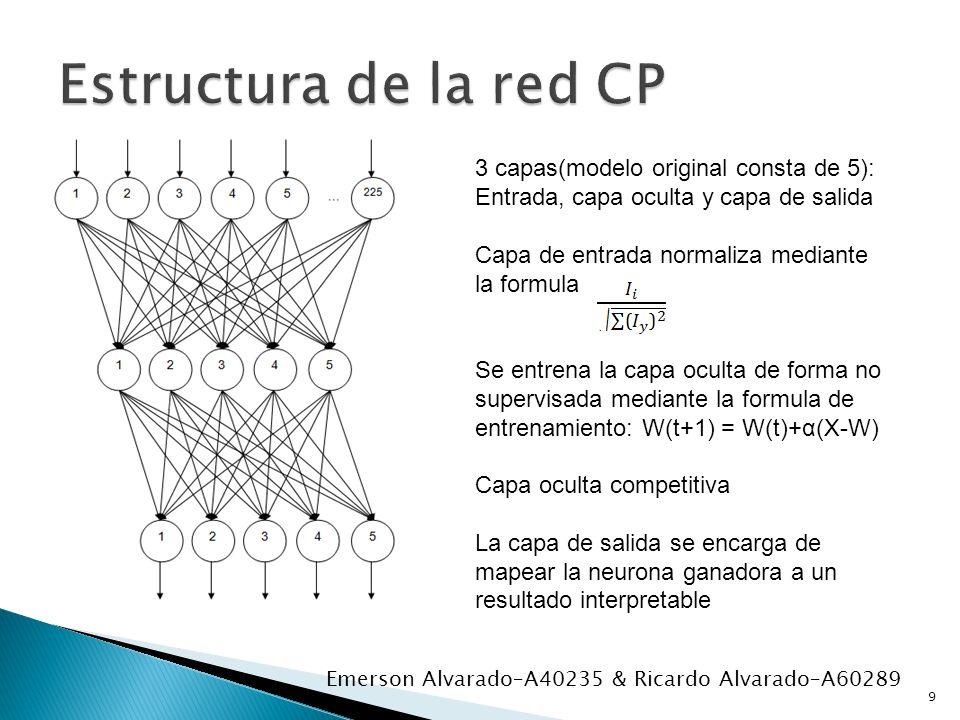 Estructura de la red CP 3 capas(modelo original consta de 5): Entrada, capa oculta y capa de salida.