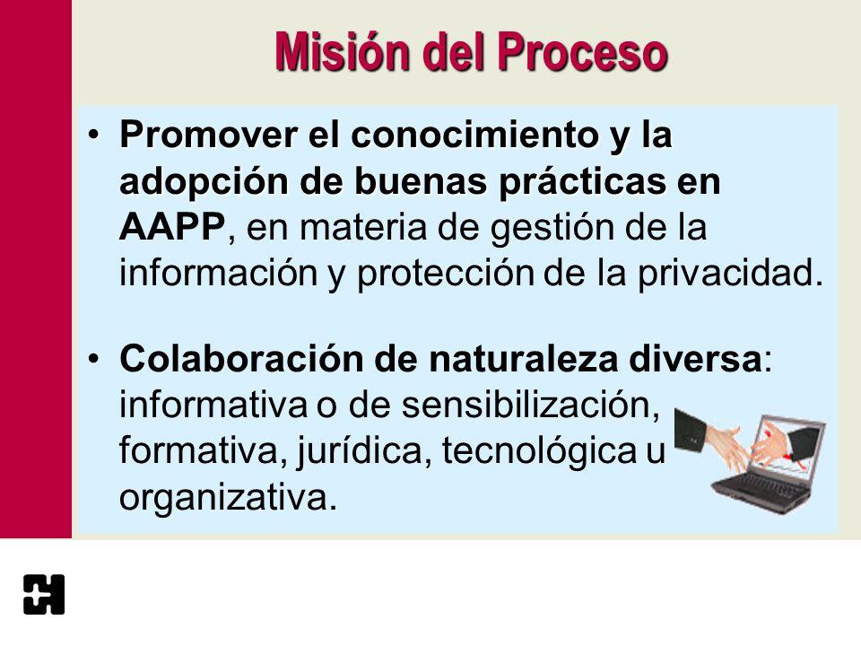 Misión del Proceso