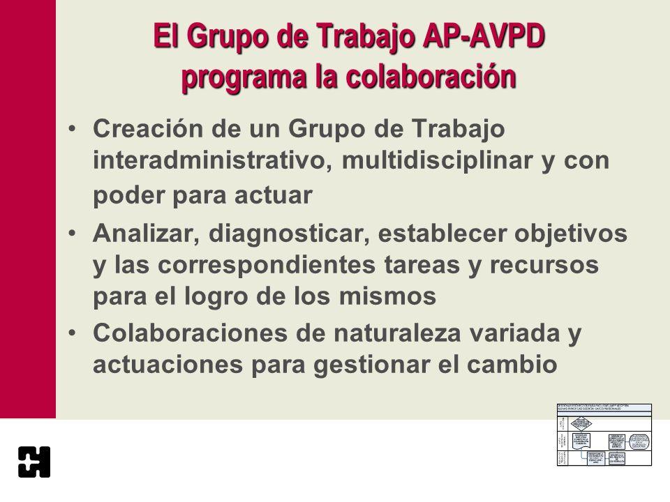 El Grupo de Trabajo AP-AVPD programa la colaboración