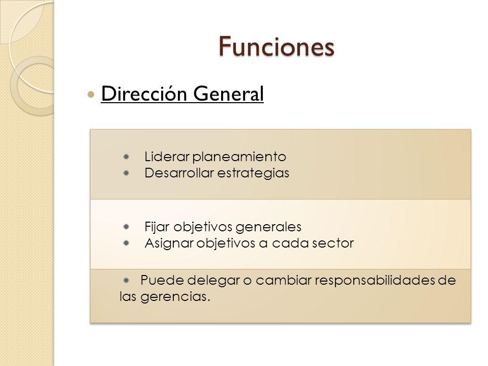 Funciones Dirección General Liderar planeamiento