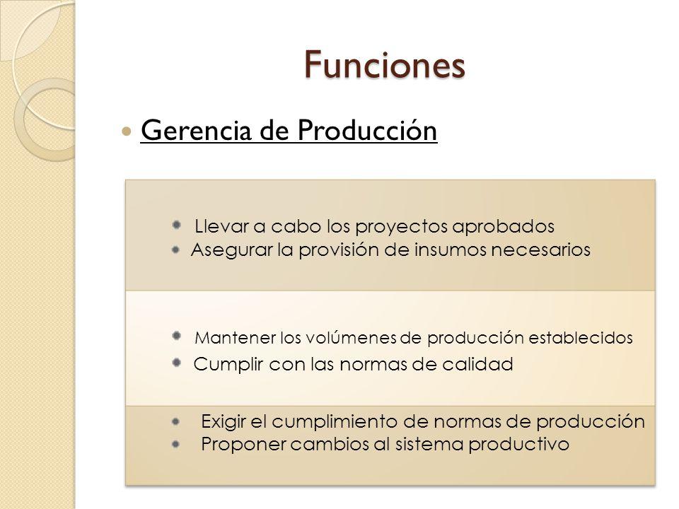 Funciones Gerencia de Producción Llevar a cabo los proyectos aprobados