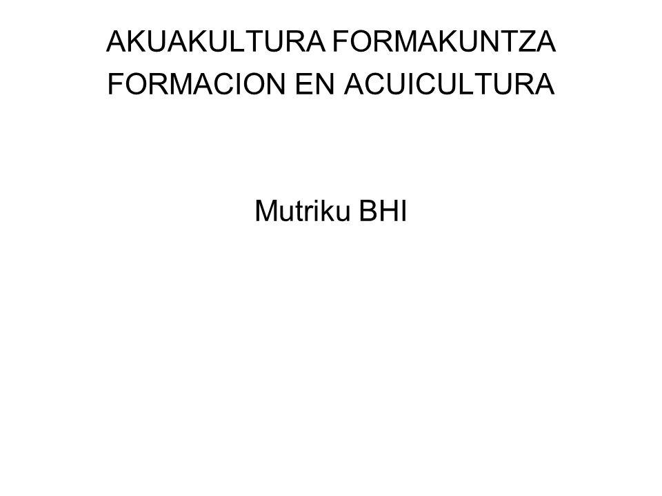 AKUAKULTURA FORMAKUNTZA FORMACION EN ACUICULTURA Mutriku BHI