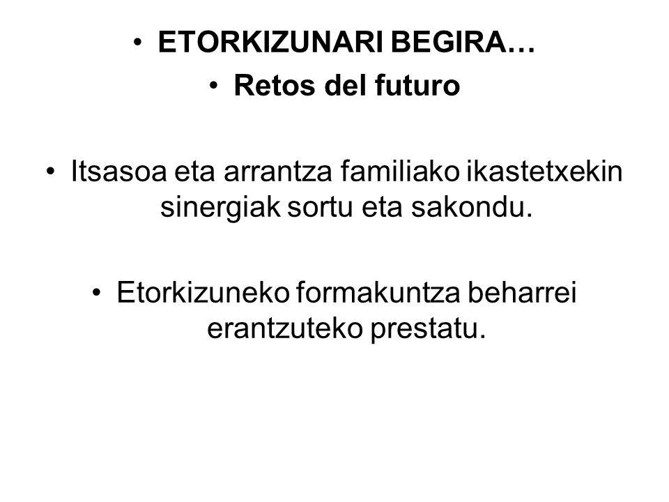 Etorkizuneko formakuntza beharrei erantzuteko prestatu.