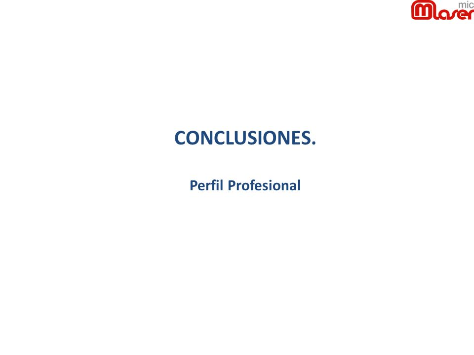CONCLUSIONES. Perfil Profesional