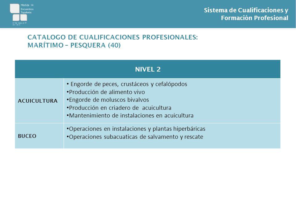 CATALOGO DE CUALIFICACIONES PROFESIONALES: MARÍTIMO – PESQUERA (40)