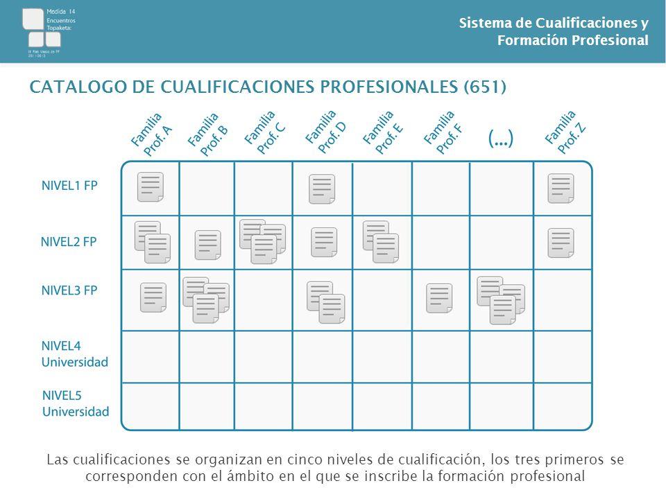 CATALOGO DE CUALIFICACIONES PROFESIONALES (651)