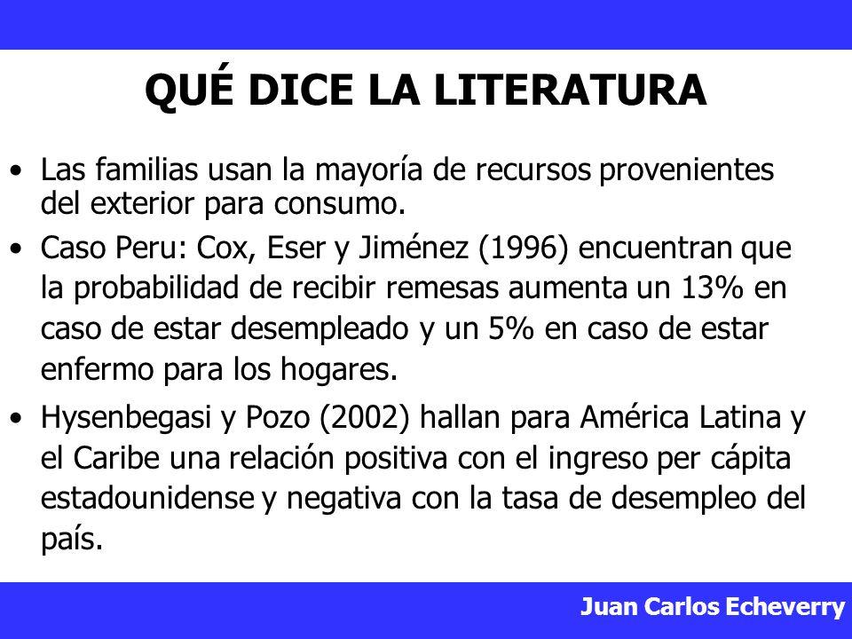 QUÉ DICE LA LITERATURA Las familias usan la mayoría de recursos provenientes del exterior para consumo.