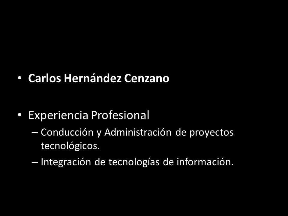 Carlos Hernández Cenzano Experiencia Profesional