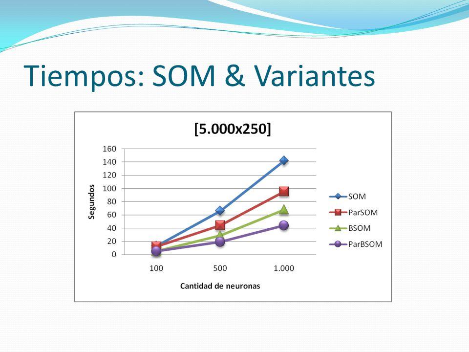 Tiempos: SOM & Variantes