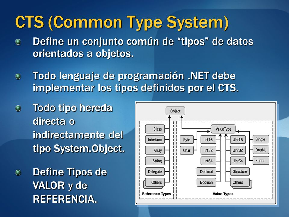 CTS (Common Type System)