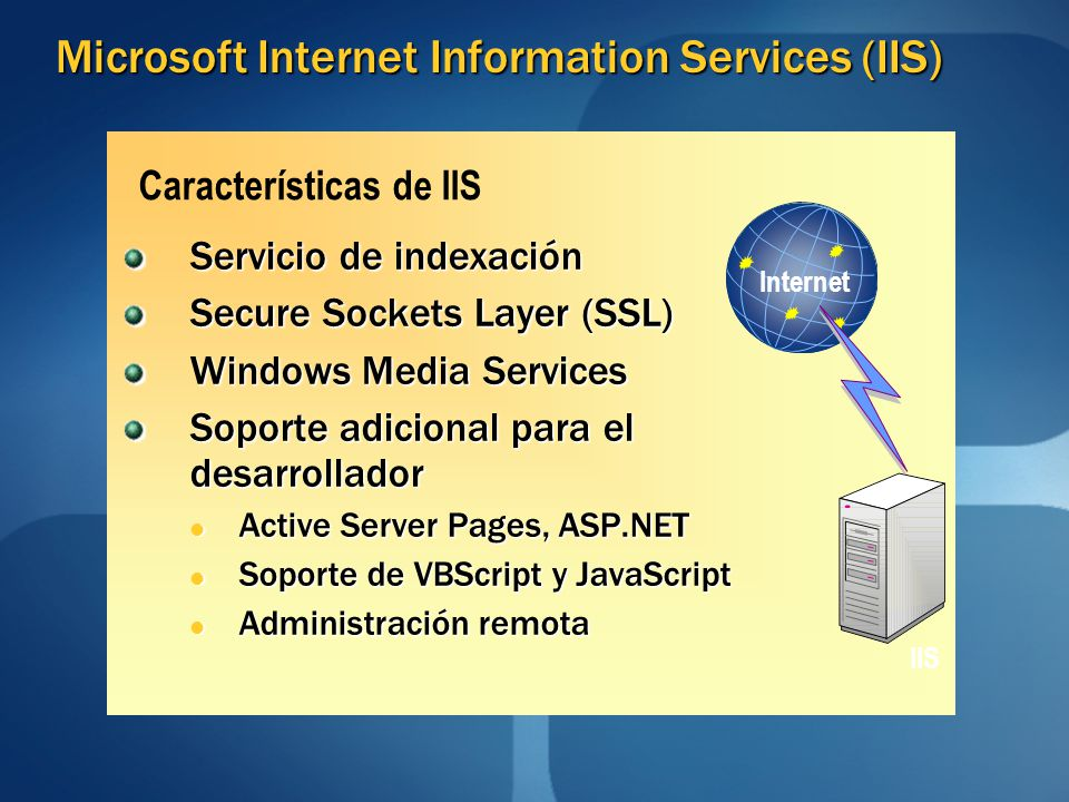Microsoft Internet Information Services (IIS)