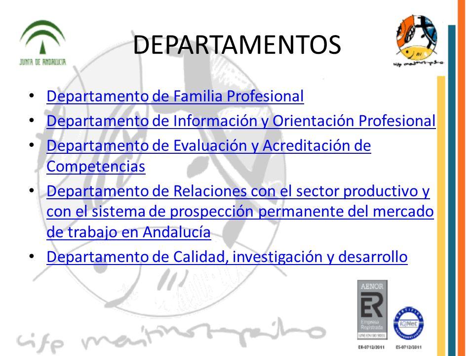 DEPARTAMENTOS Departamento de Familia Profesional