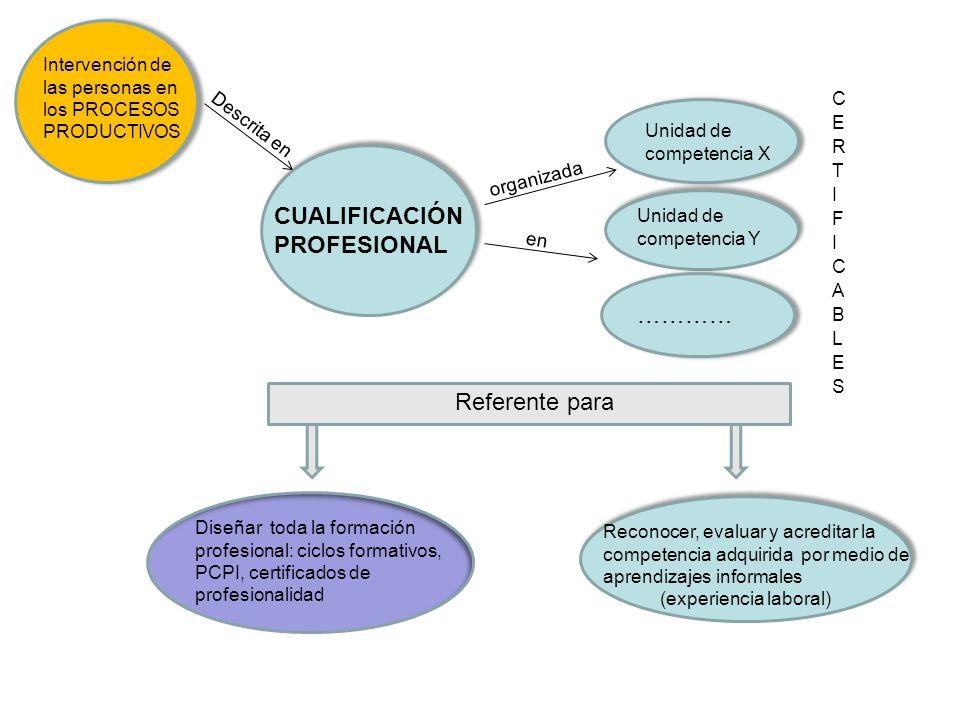 CUALIFICACIÓN PROFESIONAL ………… Referente para