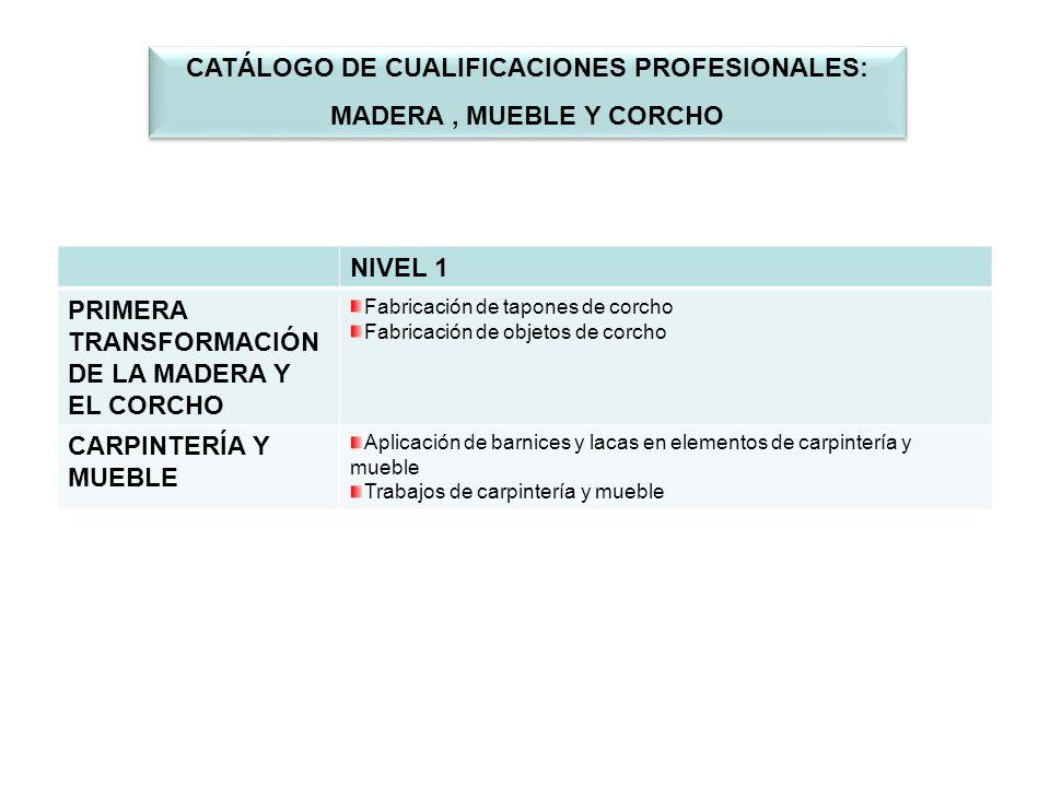 CATÁLOGO DE CUALIFICACIONES PROFESIONALES: