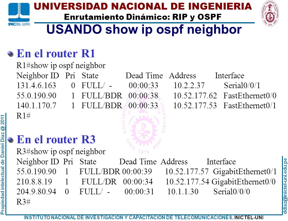 USANDO show ip ospf neighbor