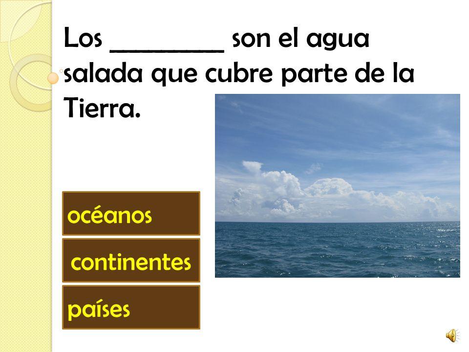 Los _________ son el agua salada que cubre parte de la Tierra.