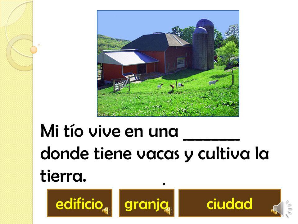 Mi tío vive en una _______ donde tiene vacas y cultiva la tierra.