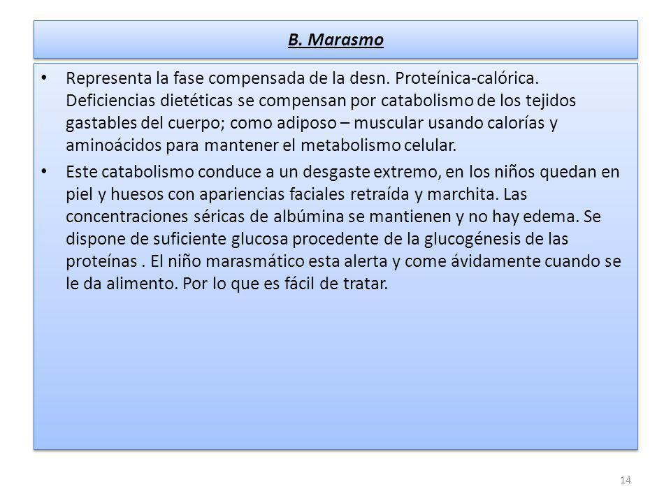 B. Marasmo