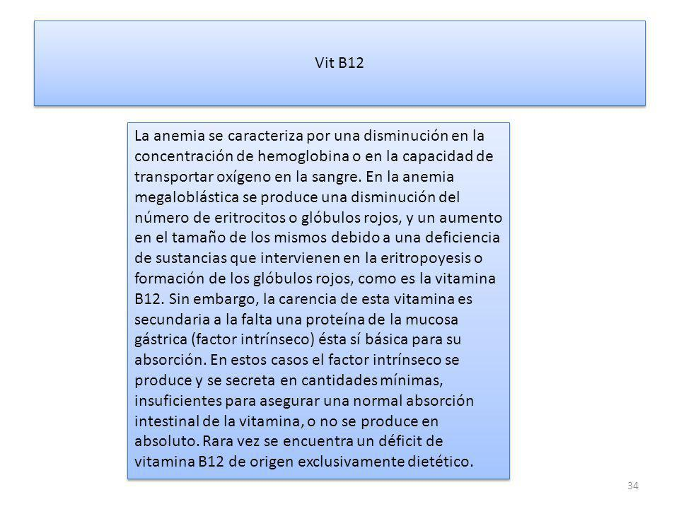 Vit B12
