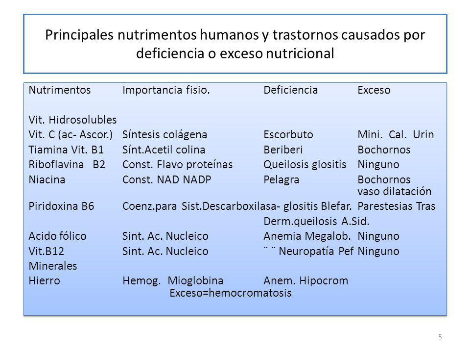 Principales nutrimentos humanos y trastornos causados por deficiencia o exceso nutricional