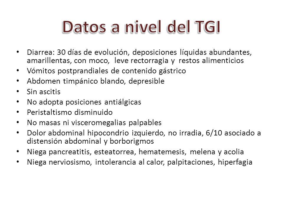 Datos a nivel del TGI